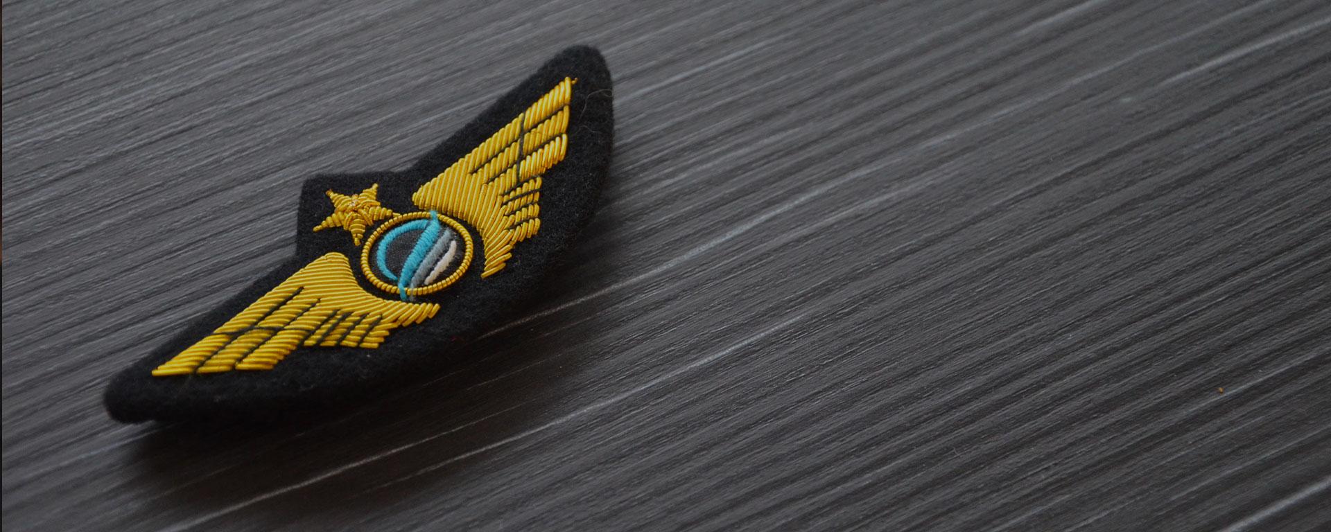 qualification instructeur flight instructor fi